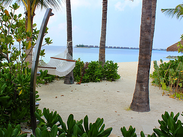 Relax in your hammock in maldives next to Noosa Outdoor Shower by Rainware